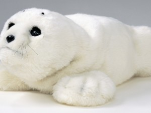 Robotics and dementia: Paro, the baby seal